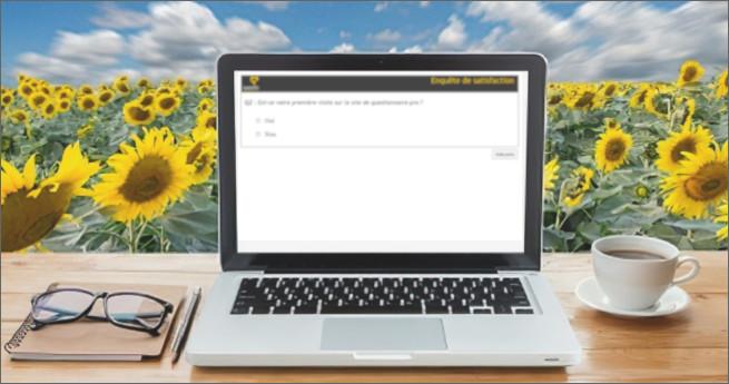 Illustration d'un écran de questionnaire-pro